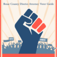 Bexar County District Attorney Voter Guide